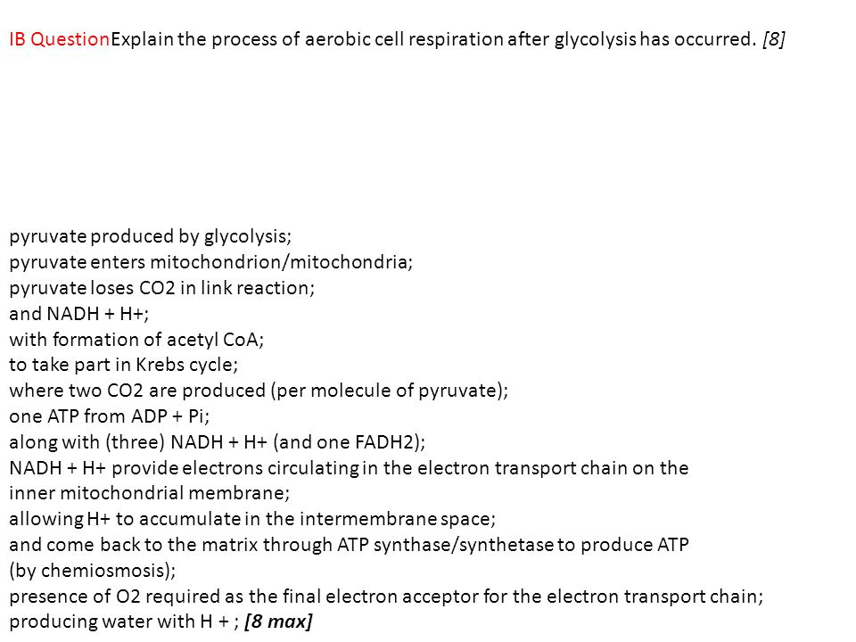 IB QuestionExplain the process of aerobic cell respiration after glycolysis has occurred. [8]